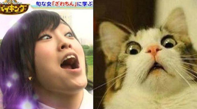 Useless #42: Sayanee's face, moonwalking, Doraemon, kissy kissy