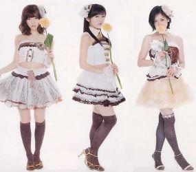 AKB48 Knee High Socks Day 24